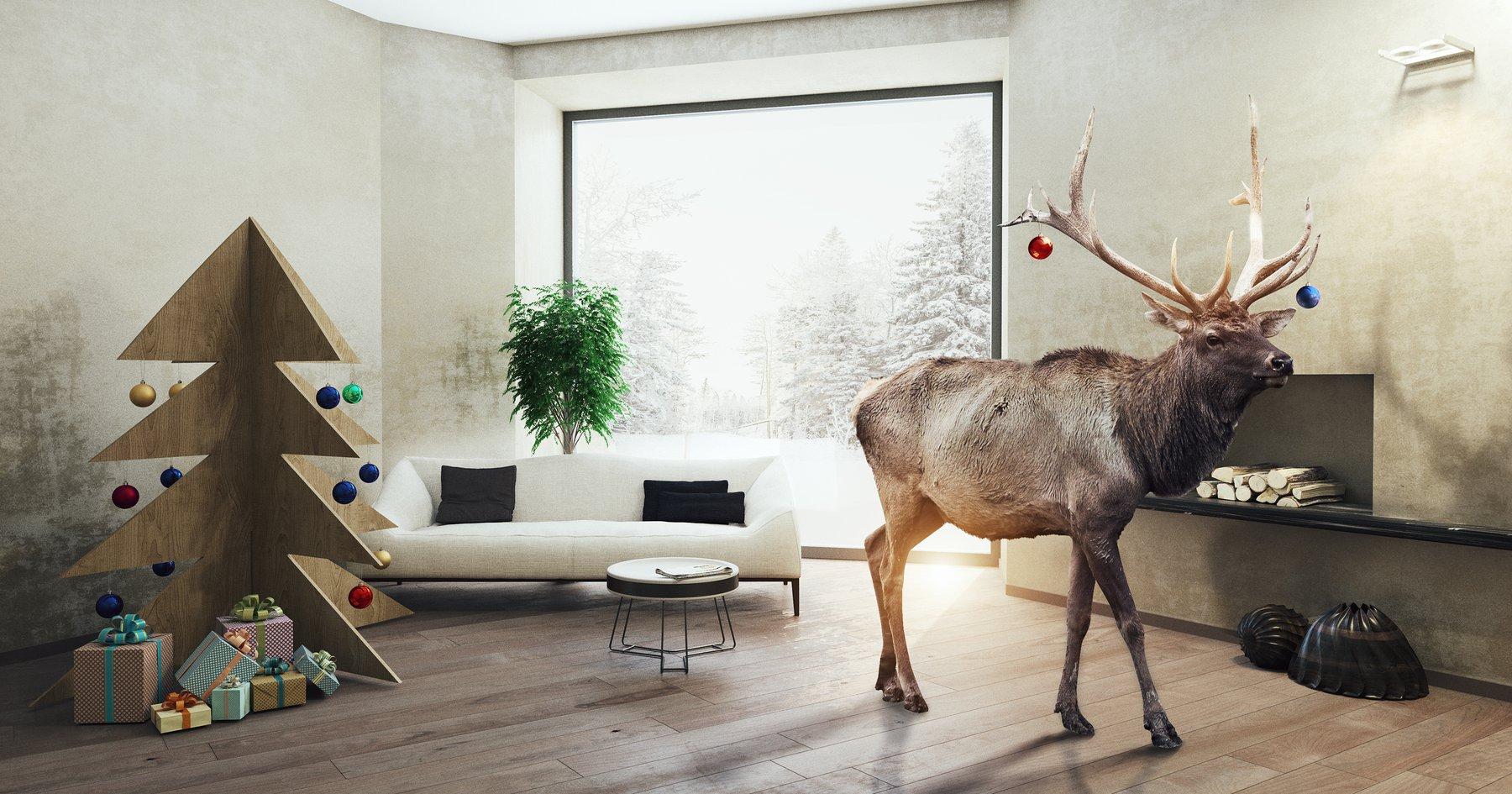 Aldi Werbung Weihnachten Kühlschrank : Wanddekoration zu weihnachten aldi inspiriert